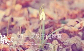 来自我心:听一朵花开的声音