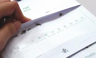 虫子旁:微观世界的理想人生