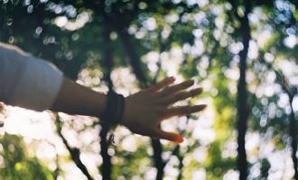 那些时光里游走的人,是我们再也遇不见的自己