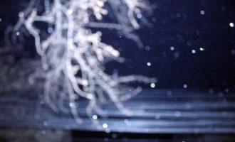 我在雪夜看到温暖的微光涌动