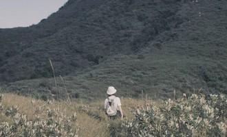 只要想起一生中美好的事,梨花就开满了南山