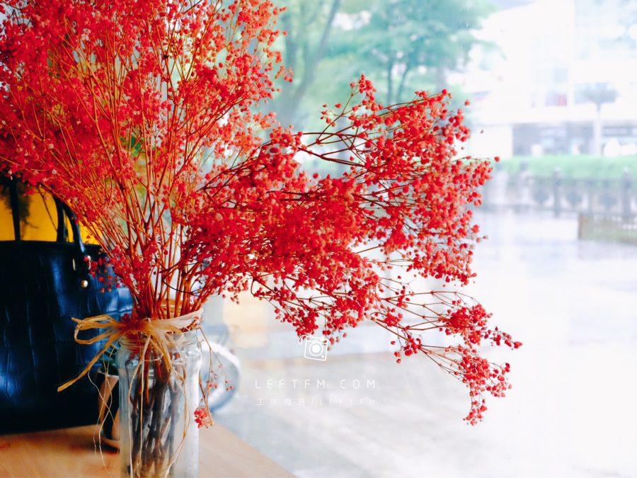 下着雨的星期天,也要选择与阳光坐在一起