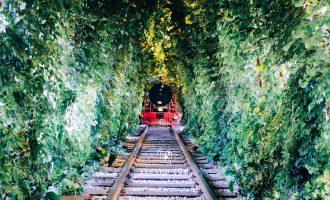 人生是一辆欲望的列车