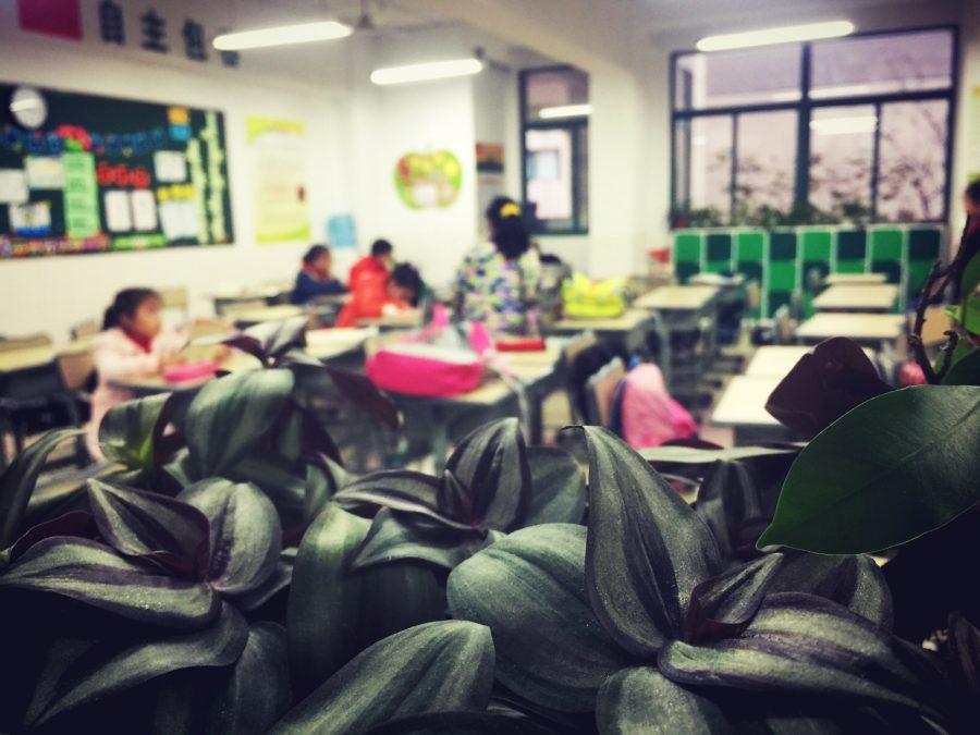 一位中国小学生家长的日常