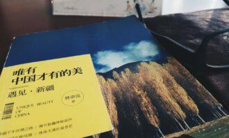唯有中国才有的美:遇见·新疆:余生不多,值得忘形